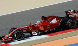 Alonso-libres-1